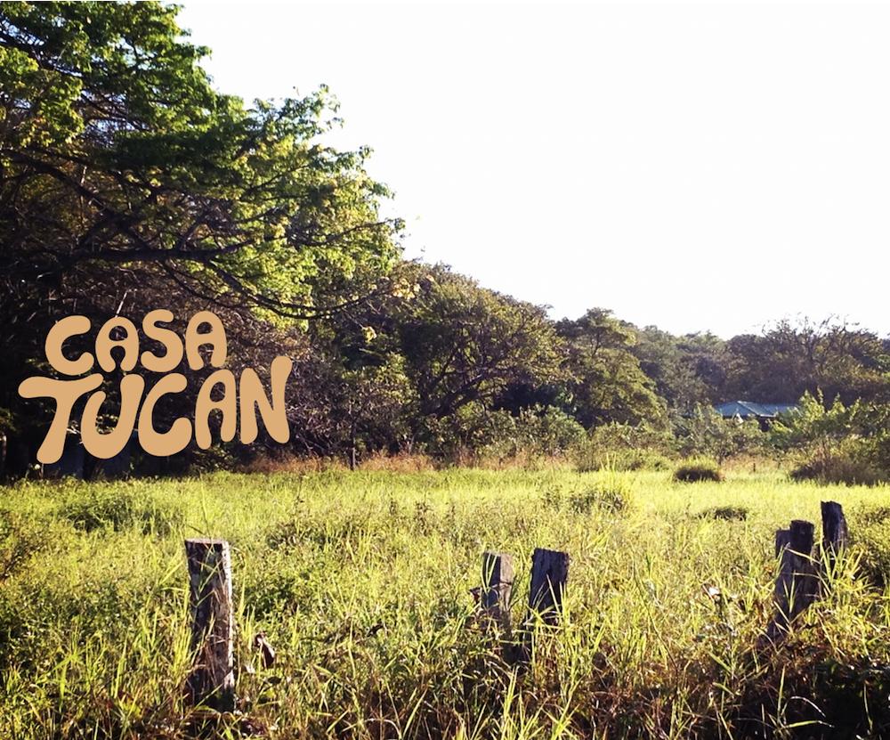 Hotel Casa Tucan Brand Identity